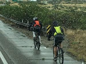 Rain in Tucson